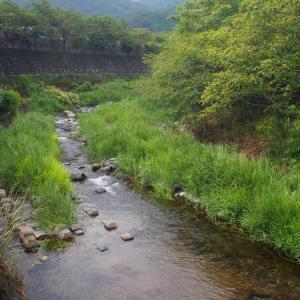 宮ケ瀬ダムに行きました