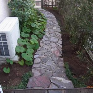 庭作り その後