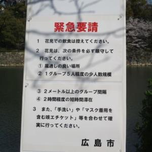 緊急要請!広島市も花見の自粛要請・・・桜が見事な広島城・・・ビールと花見弁当は来年まで我慢、ガマン
