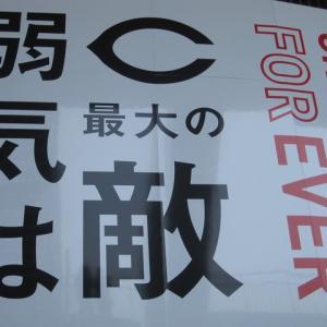 誠也7号ホームラン・・・カープ、読売に1-12で負け クリス、島内、大炎上!涙のマツダスタジアム