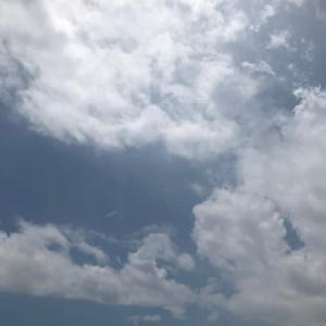夏が来ました 広島市も梅雨明けです