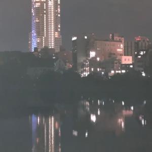 夜の広島・・・京橋川の夜景です 今年は忘年会もなく寂しい年末になりそうですね