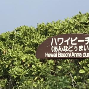 177)_ハワイビーチに行って来ました(^∇^)in JAPAN?