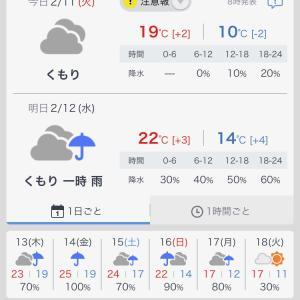 180)_喜界島&奄美大島ガイド 【その2】
