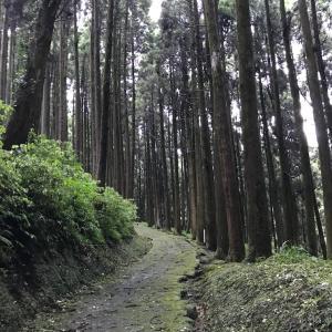 299)_鹿児島県姶良市フットパス「龍門浪漫コース」を歩きました( ´ ▽ ` )その2