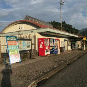 301)_独自の歩け歩け大会「熊本城周辺散策」その1