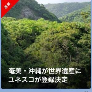 533)_祝!!世界遺産登録「奄美大島、徳之島、沖縄島北部及び西表島」。オリンピックもゴールドラッシュ!!!