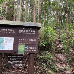 553)_五輪四連休を世界自然遺産の島で過ごす(^ ^) その8 モッチョム岳はヒルの宝庫でした(T . T)