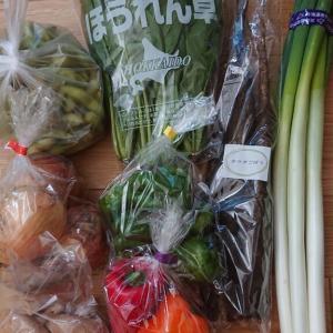 野菜が安いまるこう直売所、あぐりへい屋さんの野菜でおかずいろいろ~