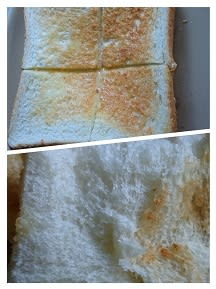 トップバリュの高級食パン極ブレッド