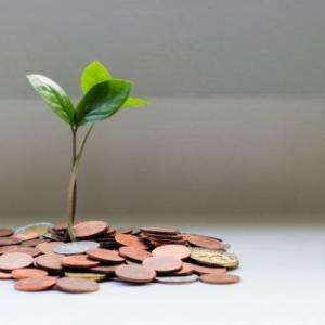 楽天VTIの投資実績【2020年11月】