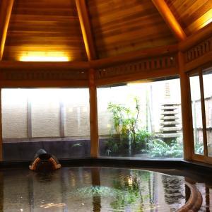 お誕生日旅行 ♡ 湯河原の老舗旅館 と 伊豆の絶景リゾートホテル