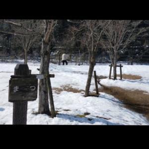 今年最初のファミリーキャンプ!『カヌー公園さくぎ』 2021/2/20~21