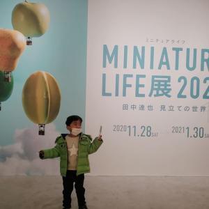 佐賀県立美術館 ミニチュアライフ展 田中達也 見立ての世界