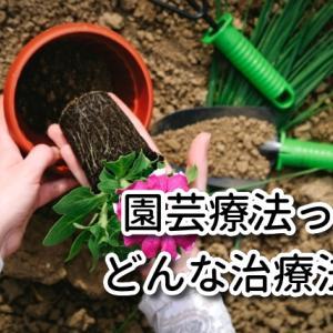 植物を育ててリフレッシュ! 統合失調症の治療に有効な「園芸療法」の魅力や効果を徹底紹介