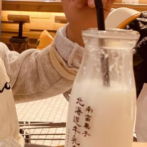 新千歳空港の続き!!美味い牛乳【北海道牛乳カステラ】