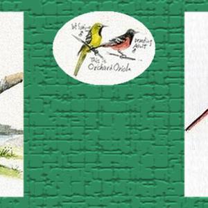 Birdstar's Blogのヘッダ画像紹介