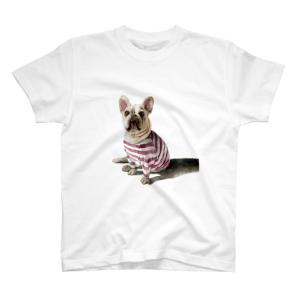 おもちちゃんグッズ&Tシャツセール!