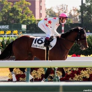 中山8R-土曜の勝負レース-