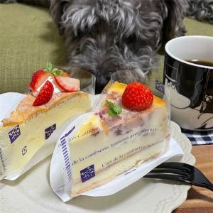 鬼 忙しかった午後と ご褒美ケーキ