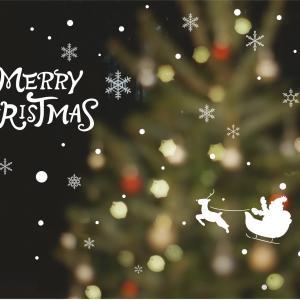 クリスマスは本物のモミの木で
