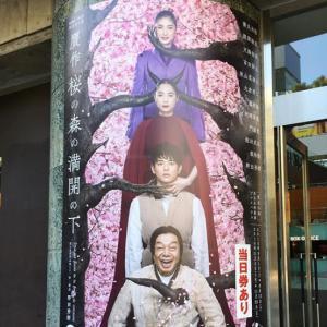 天海さん宝塚退団初の男役姿♪「贋作桜の森の満開の下」