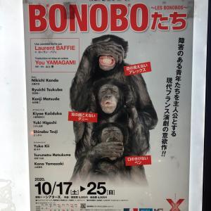 【スマホで字幕】舞台「BONOBOたち」