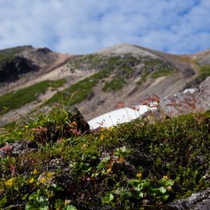 ハイキングコース紹介 - 乗鞍岳 剣が峰