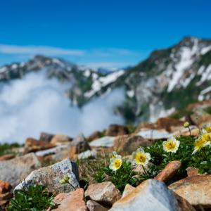 小蓮華山トレッキング (3) - 小蓮華山への登り斜面