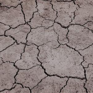 中高年の私が共感するのは、乾燥に関する記事