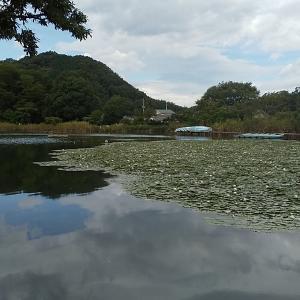 千代田湖18