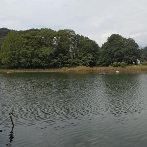 千代田湖17