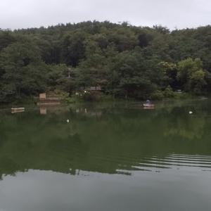 千代田湖9