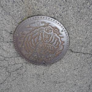大阪散歩2018 144.泉大津市のマンホール