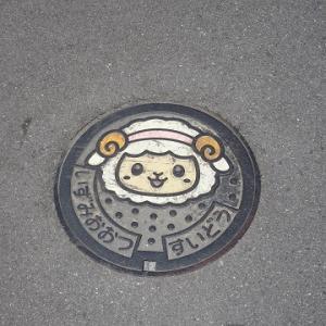 大阪散歩2018 159.泉大津市のマンホール