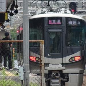 高田・五位堂に行く(2019.7)52.和歌山駅行き普通