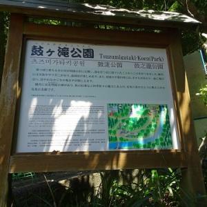 西宮・有馬温泉に行く(2019.8)144鼓が滝公園