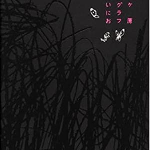 マンガ紹介「虹ヶ原ホログラフ」
