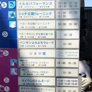 名古屋水族館 イルカさんたちの泳ぎがすごい!!