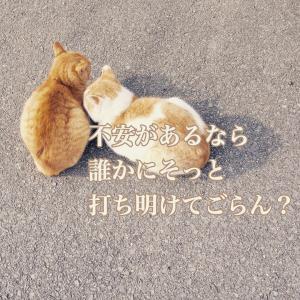 今日のメッセージ〜吐き出す〜