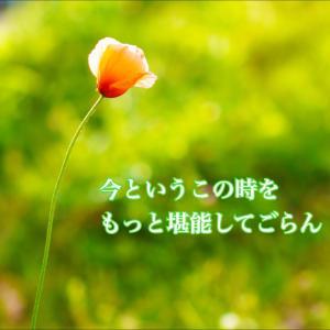 今日のメッセージ〜ゲーム〜