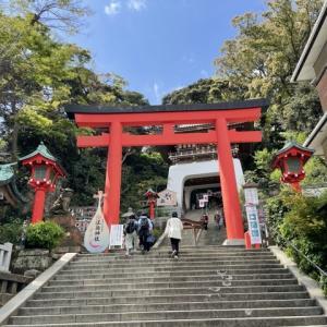 【予告】江ノ島鎌倉ツアーしまーす