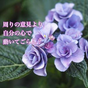 今日のメッセージ〜自分の心に〜