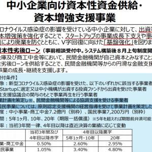新型コロナウイルス対策資本性劣後ローン【事業計画作成のポイント】