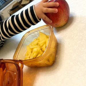 りんごバターと地方都市の保活事情