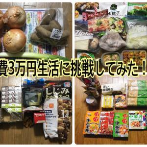 【夫婦2人暮らし】食費3万円生活に挑戦してみた!①【月内購入品は約2万円】