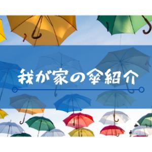 我が家のお気に入りの傘