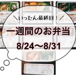 【8/24~8/31】一週間のお弁当まとめ!