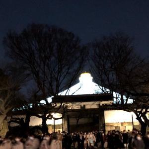 【イコラブ】武道館公演初日参戦レポ ~光る玉ねぎの下で~【イコラブ】