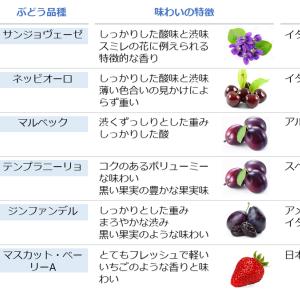 品種の特徴を知ろう!赤ワイン編②【他にもある、色々な品種】